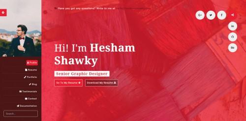 classy portfolio theme designer page