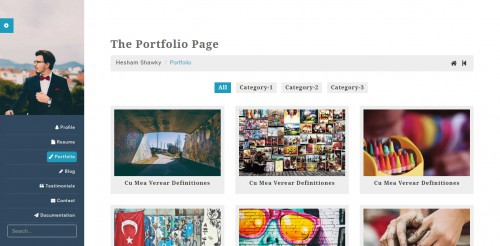 classy portfolio theme portfolio page