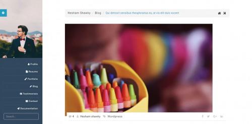 classy portfolio theme single post page